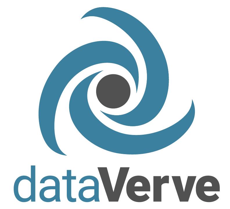 dataverve logo v01