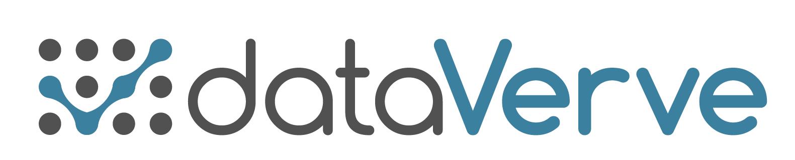 dataverve logo v02